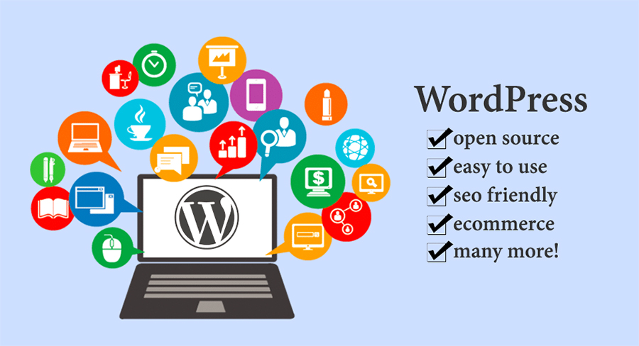 word press web graphic design